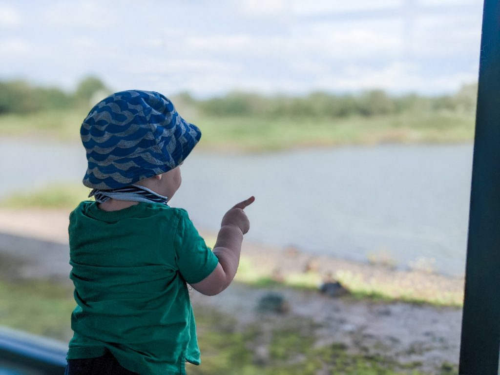 Felix inside a hide at WWT Caerlaverock pointing at the ducks