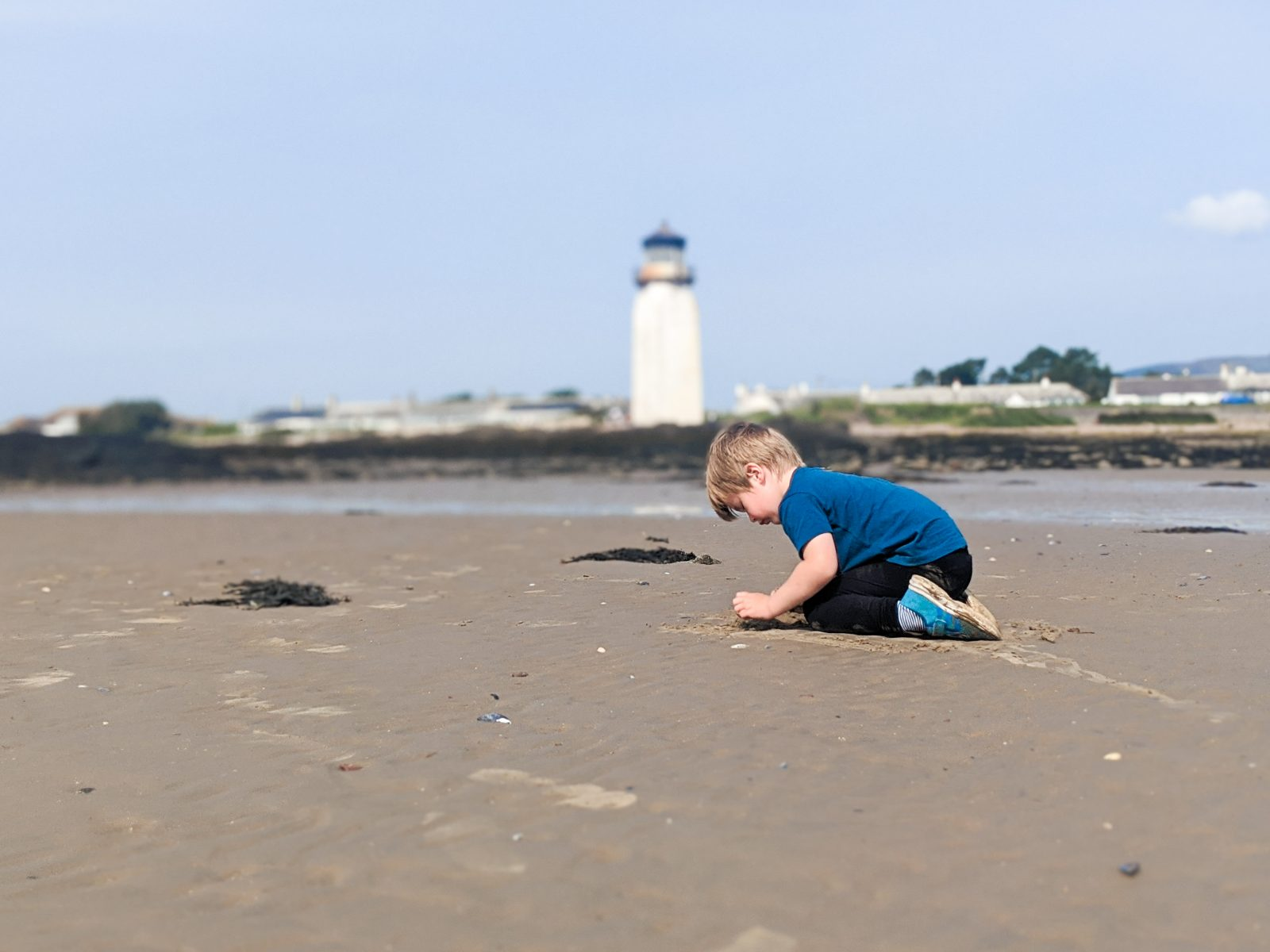 Dexter playing on Southerness beach with the lighthouse in the background